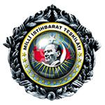 mit-logo-zirve-bayrak